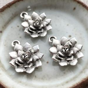 Succulent Charm Antique Silver - 1