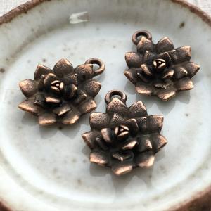 Succulent Charm Antique Copper - 1