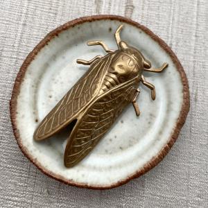Cicada - Brass